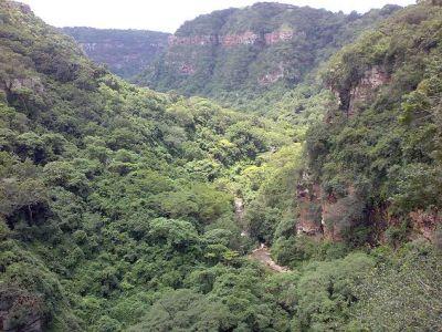 Krantzkloof nature reserve in KwaZulu Natal