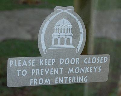 prevent-monkeys