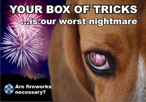 SPCA-Fireworks-Poster-Dog