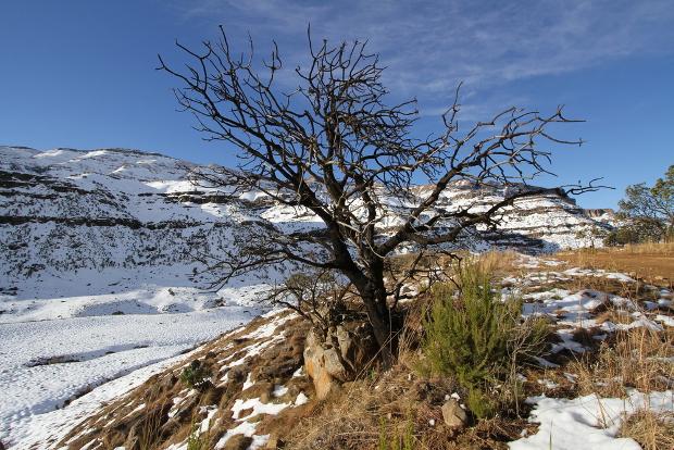 Sani_pass_snow